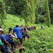 descending to deniki Kokoda