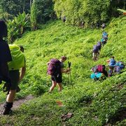rolloing mountains of kokoda track