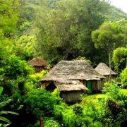 Goroka village