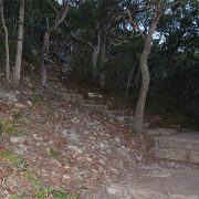 MT Tomaree paths