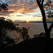 tomaree sunset