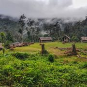 Mt Bellamy base camp Kokoda