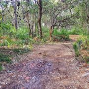 Trail near Fishermans Bay