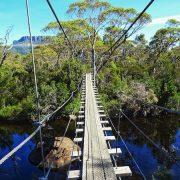Overland Track Bridge